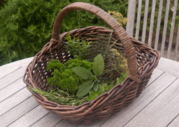 Wicker Garden Baskets