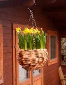 wicker hanging basket