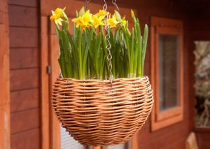 Garden Baskets from Kosmopolitan