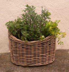 wicker planters