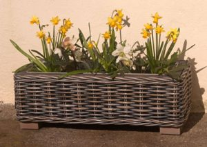Garden Baskets from Kosmopolitan