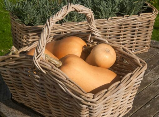 Grey Oblong Trug with Butternut Squash